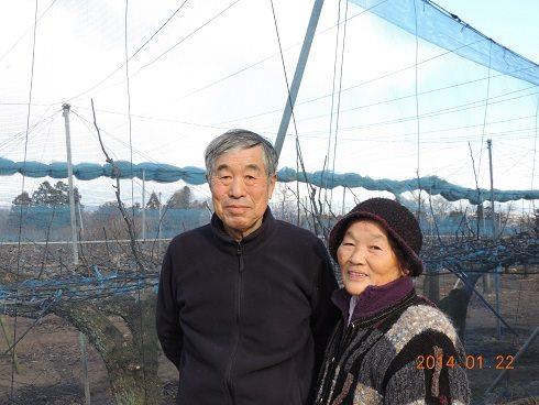Mr. & Mrs. Tomizawa