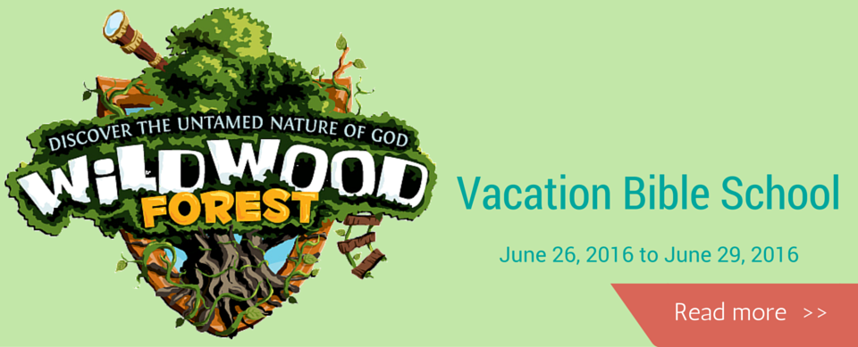 VBS 2016-more